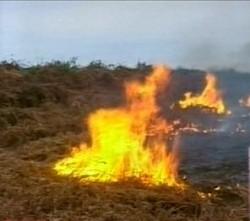 Fire at Mukhatgverdi Cemetery