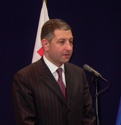 Nogaideli: Government is going to Feed Ppeople with Illusions