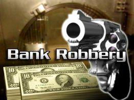 Five dead in Donetsk bank robbery