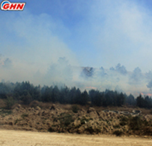 Fire in Shilda village, Kakheti region