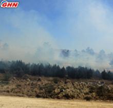 Fire in Shilda village, Kakheti region