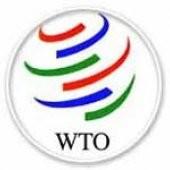 MFA explains reasons for postponing of negotiations for WTO membership