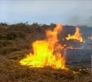 Fire in Ingiri village, Samegrelo region